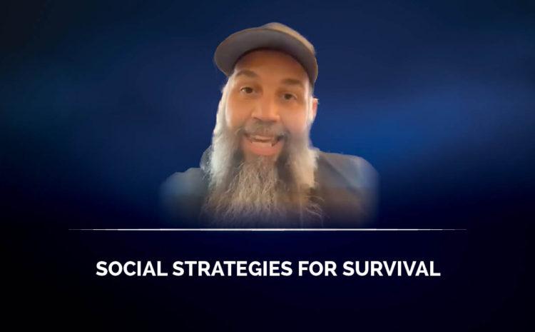 Social strategies for survival